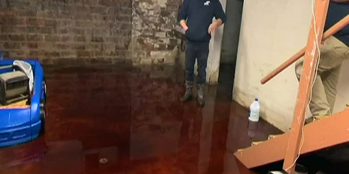 GRAPHIC: Family says Iowa meat locker won't pay to clean basement flooded with animal blood