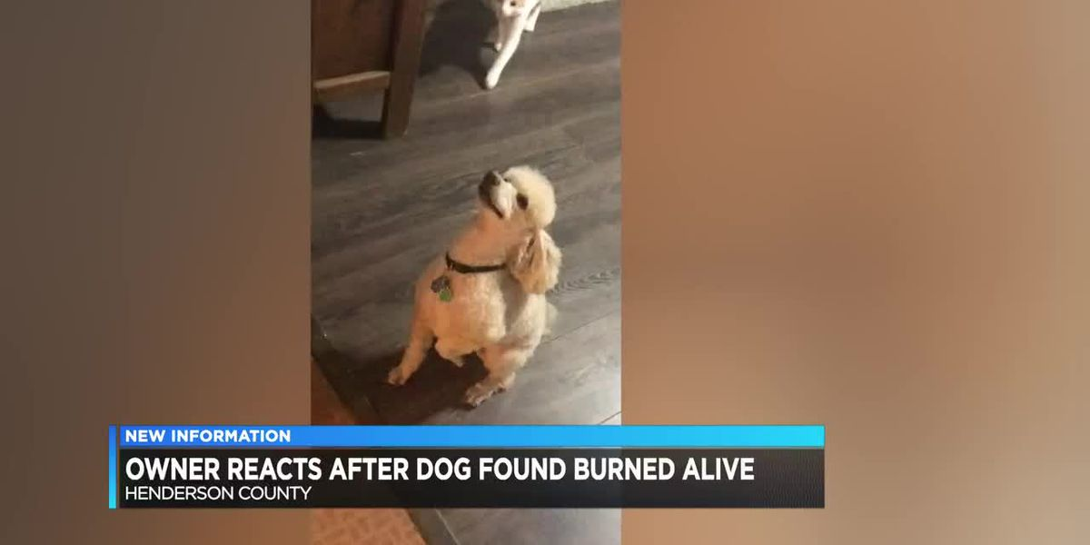 Henderson woman wants justice after her dog is found burned alive