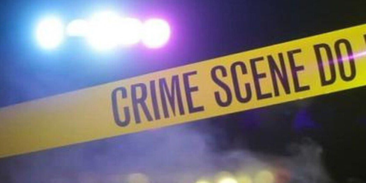 Henderson Police investigate shots fired into home