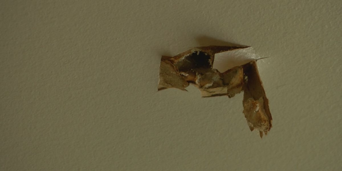 Mother speaks out after stray bullet rips through her son's bedroom ceiling