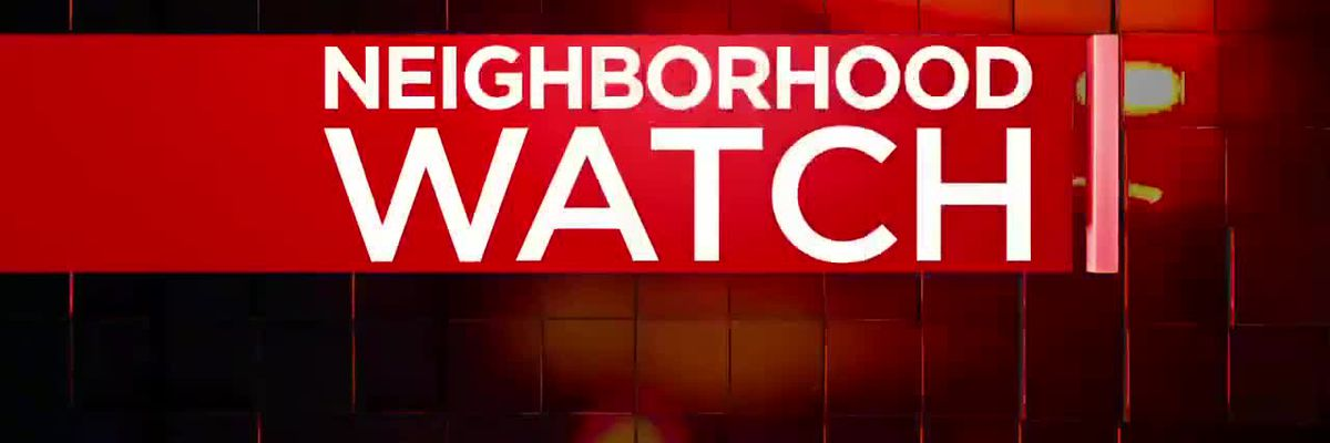 Neighborhood Watch: DCSO looking for man in theft investigation
