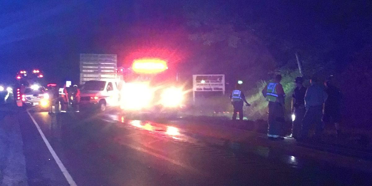 Deputies: 1 dead after semi, car crash on US-231