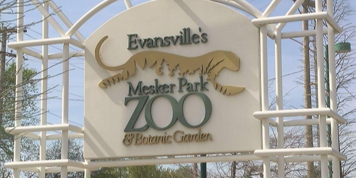 City councilman proposes privatizing Mesker Park Zoo