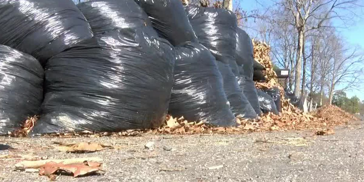 Annual fall leaf pick up begins Oct. 21 in Evansville