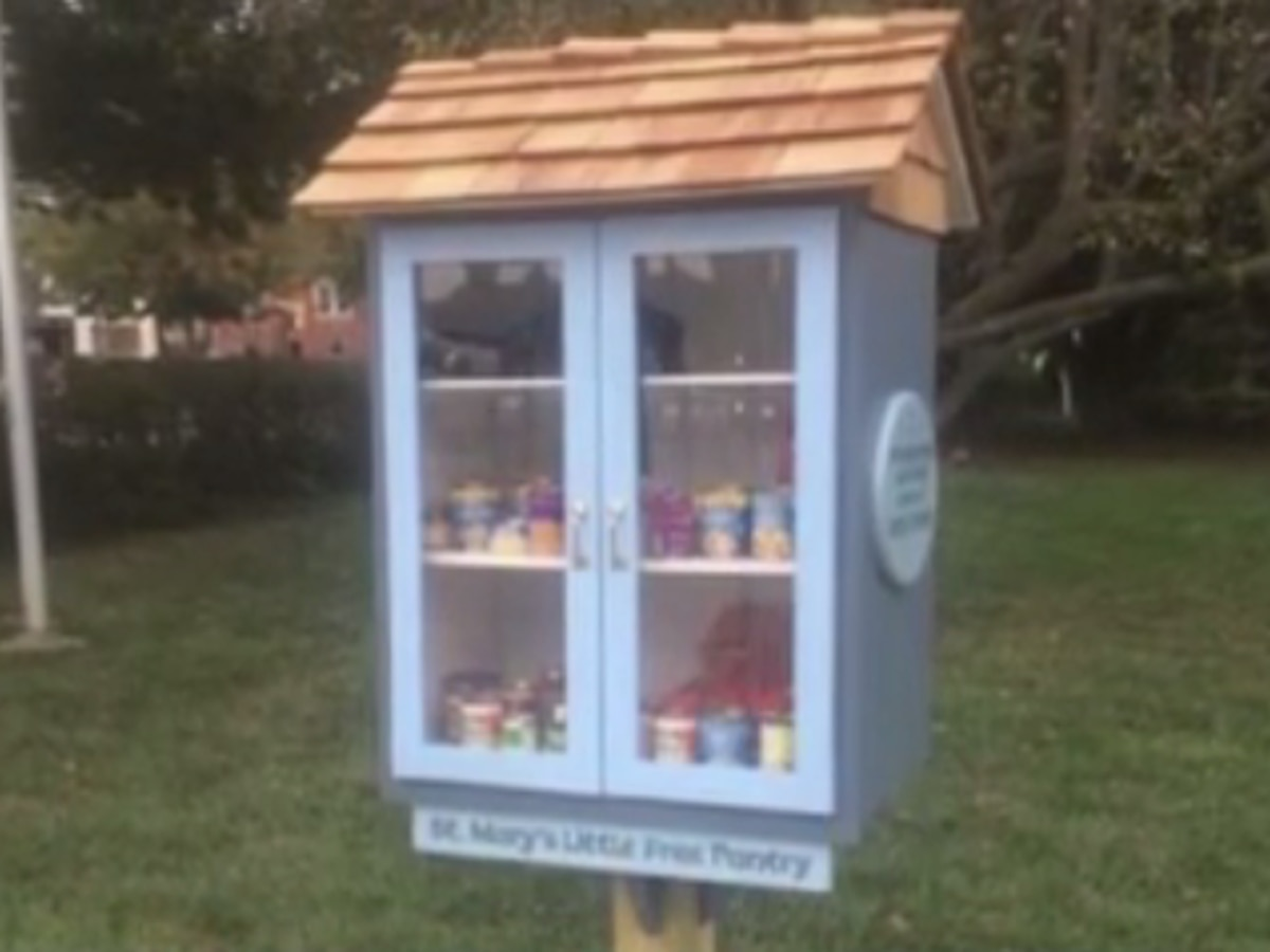 USI student crafts project to help fight food insecurity
