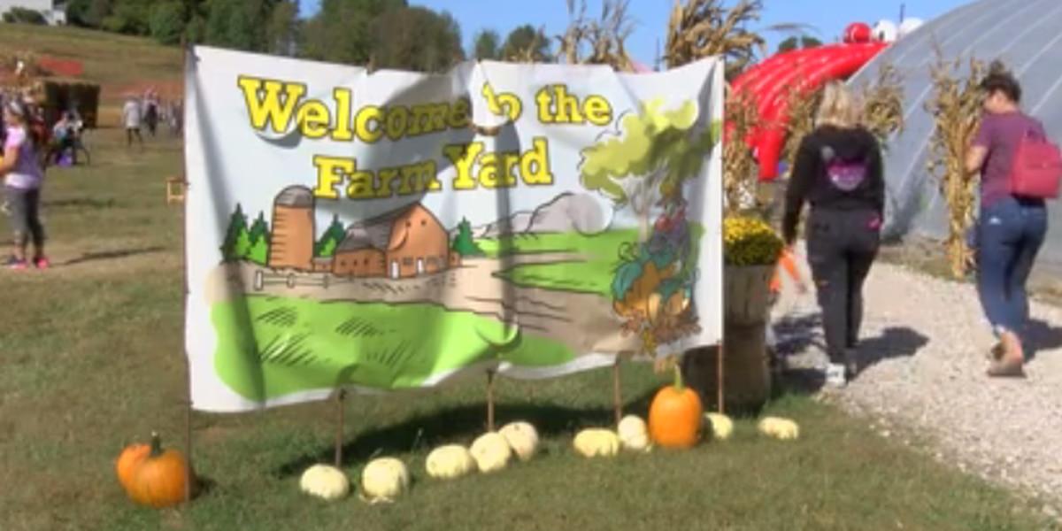 Kids enjoy Mayse Farm's Pumpkin Patch on Fall Break