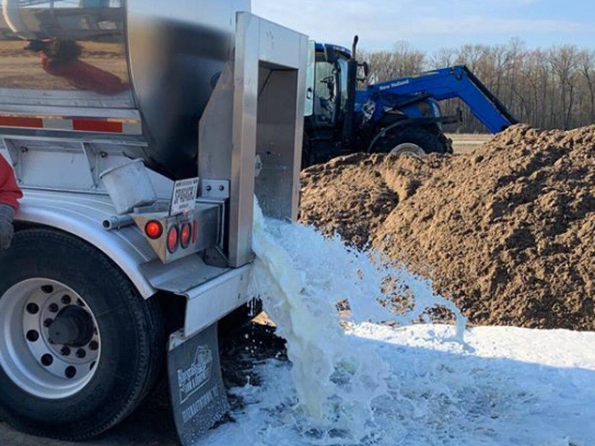 Local dairy farm dumps milk due to low demand after school, restaurant closures