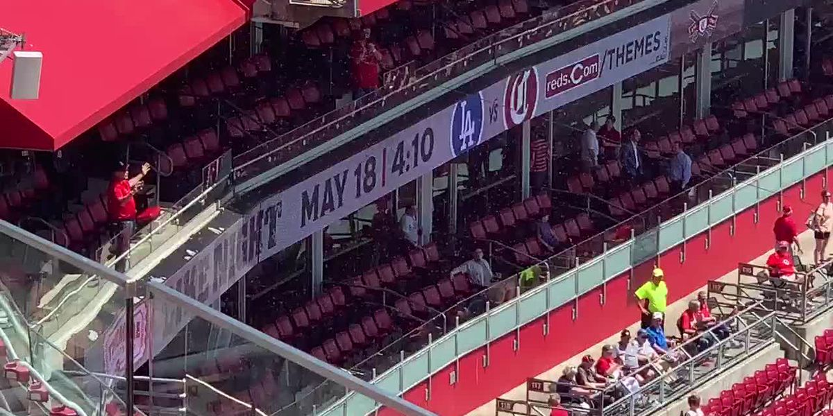 Buzzed: Swarm of bees forces delay to Giants-Reds game