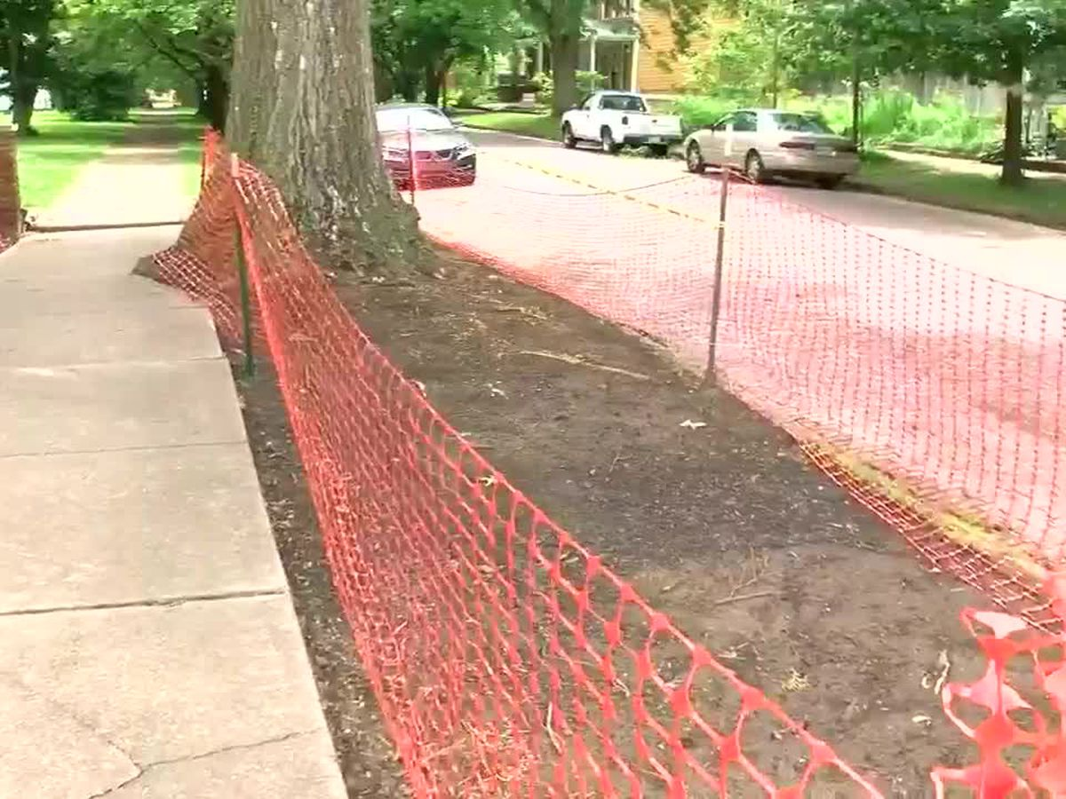 Final health report on lead contamination in Jacobsville neighborhood