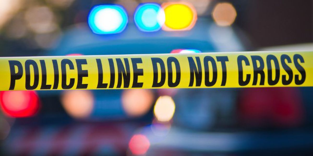 Investigation underway after 'human remains' found in rural area