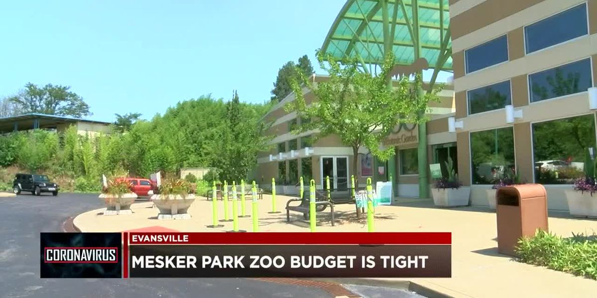 Mesker Park Zoo's budget is tight due to COVID-19