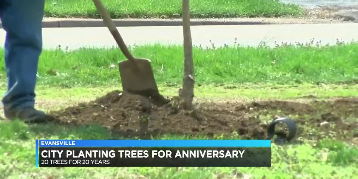 Evansville plants trees to celebrate becoming USA Tree City