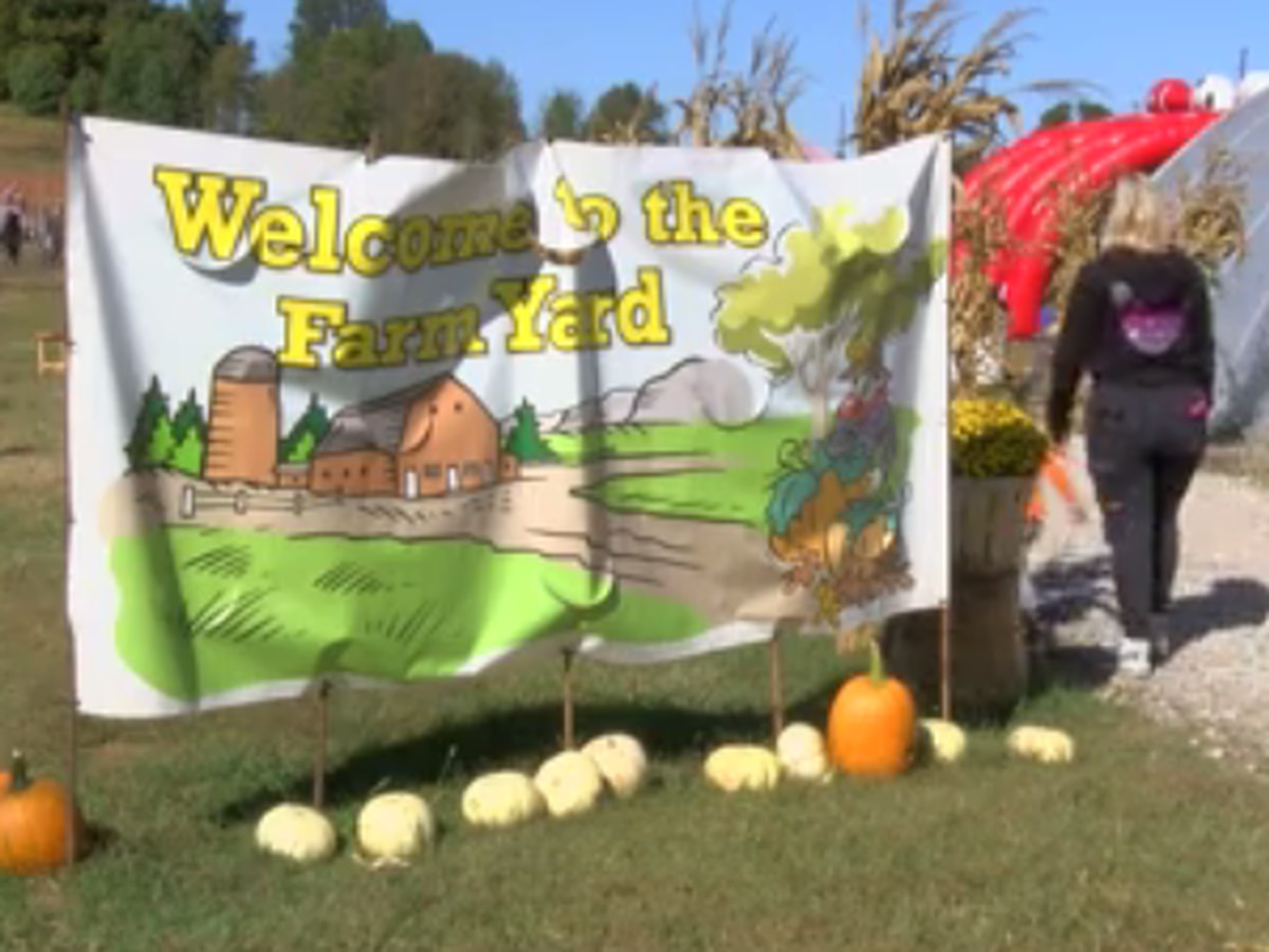 Kids enjoy Mayse Farm's Pumpkin Patch on Fall Break
