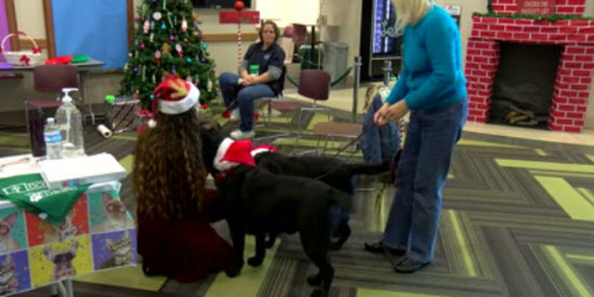Ivy Tech hoping to relieve student stress with 'Paws and Relax'