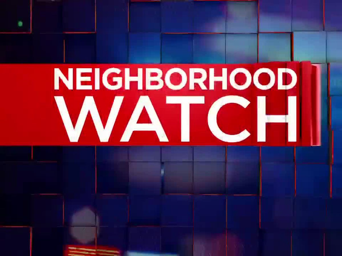 Neighborhood Watch: Neighborhood Association continues growth
