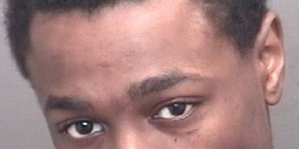 Police: Evansville man arrested for assaulting officer