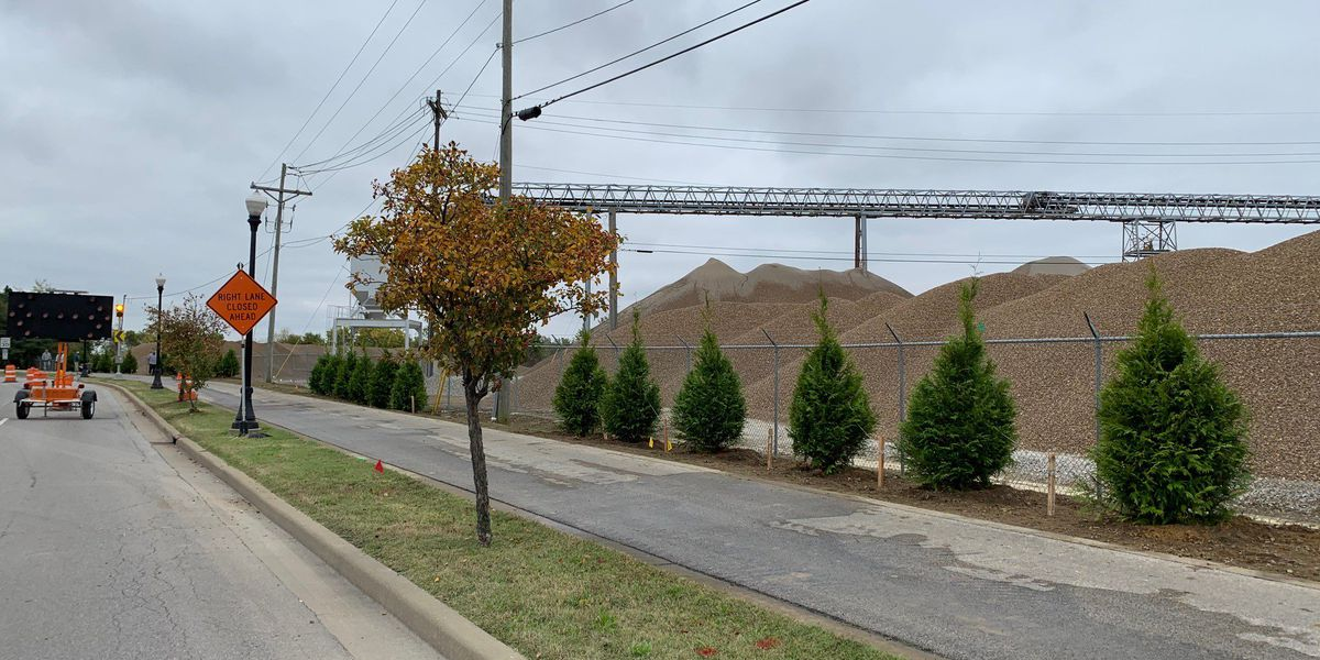 62 trees planted along Fulton Ave. in Evansville