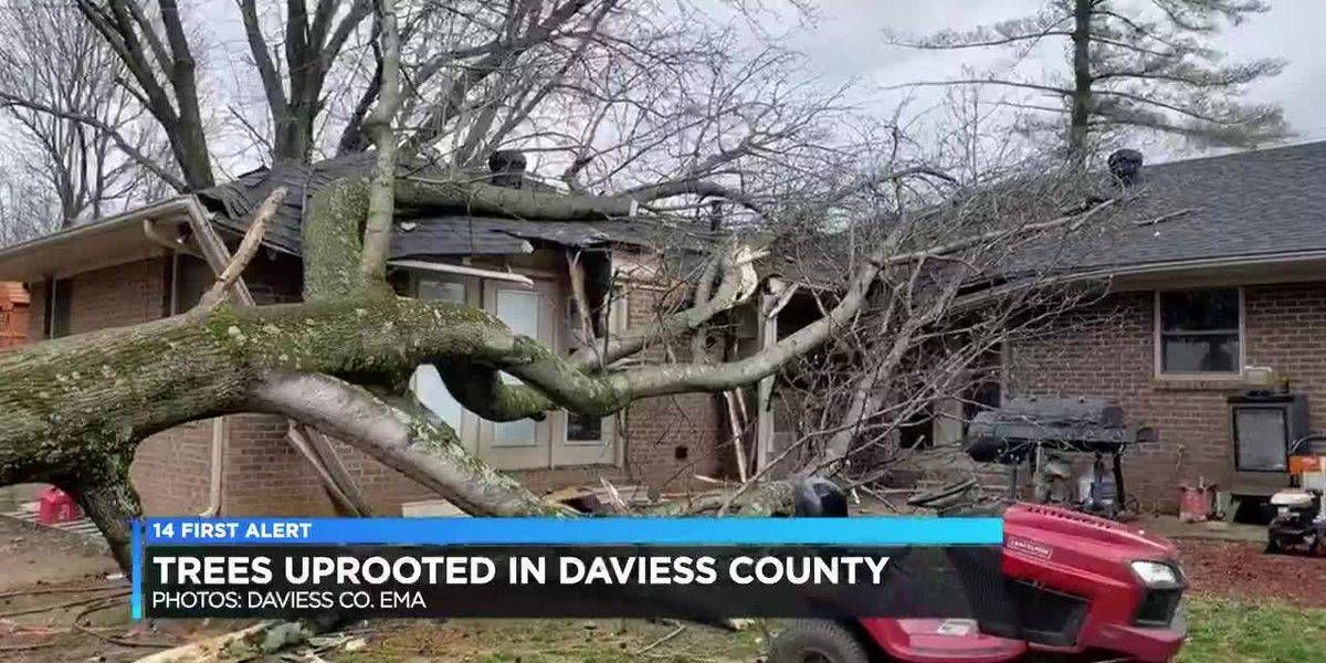 Damage left across Tri-State after storms roll through