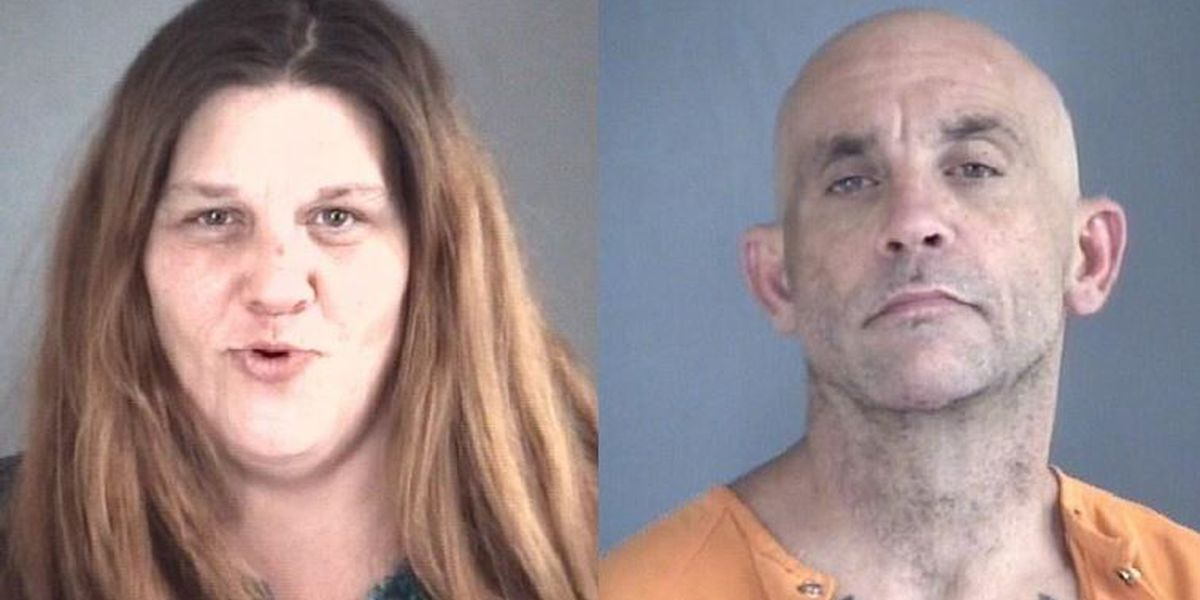 Two arrested after Gibson Co. chase