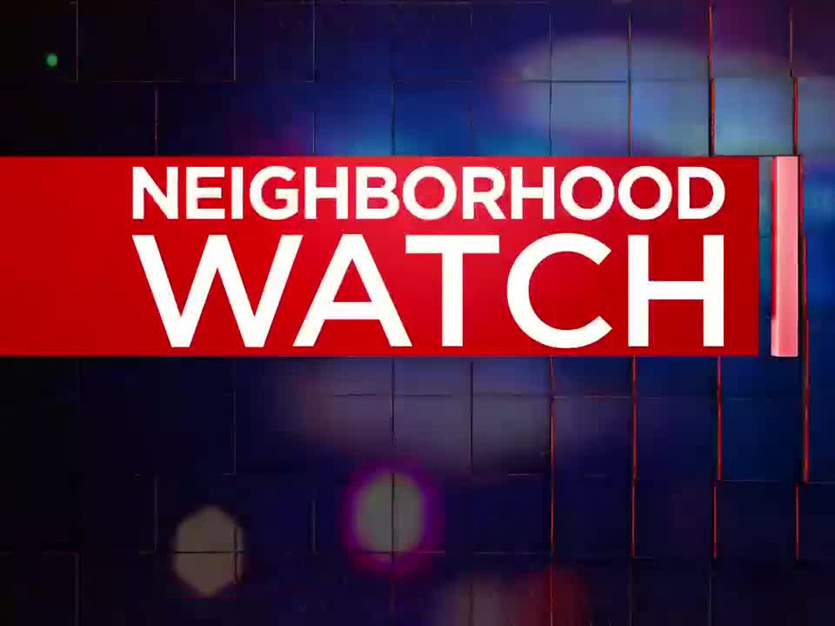 Neighborhood Watch: Car thieves caught on camera