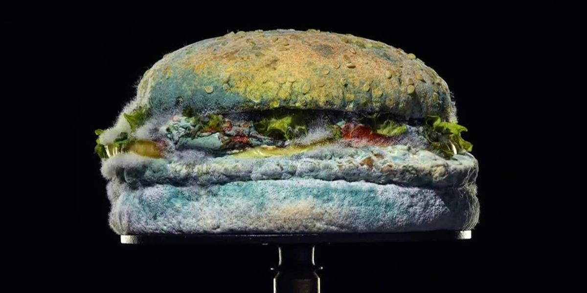 Burger King breaks the mold with new advertising campaign