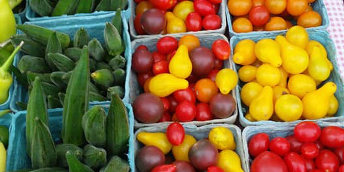 Downtown Evansville Farmers Market won't be open for 2019 season