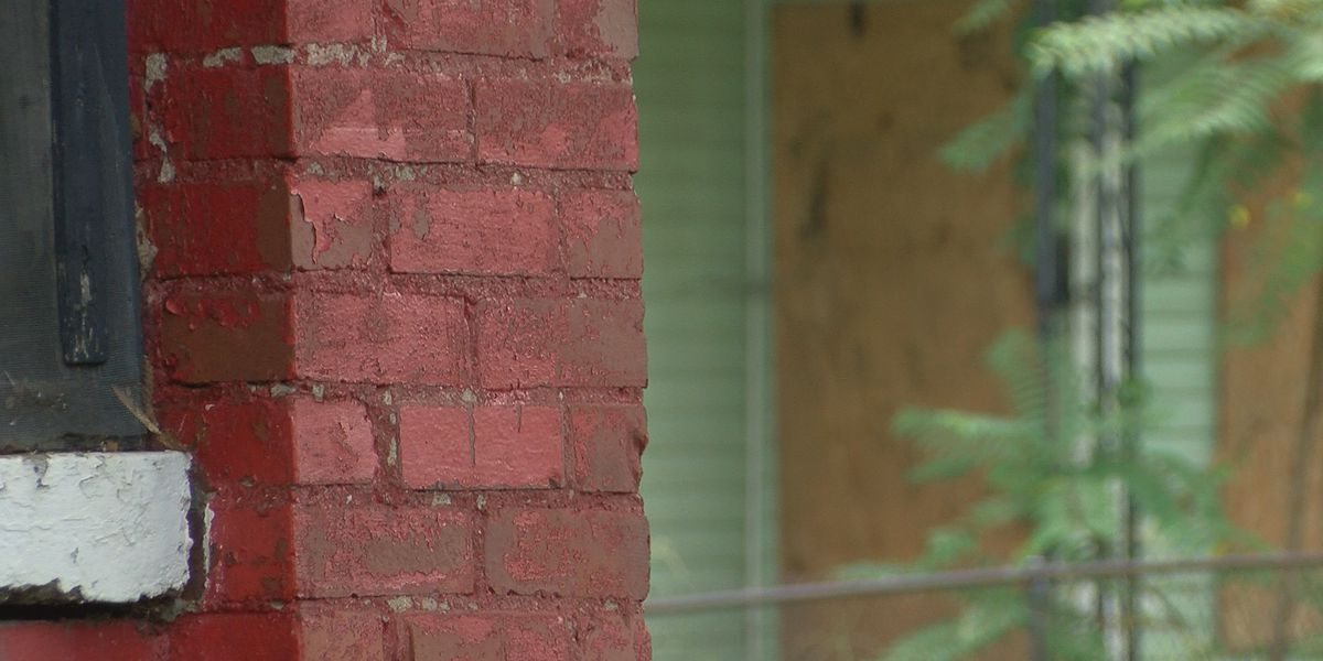 Vacant homes cause problems on Missouri Street