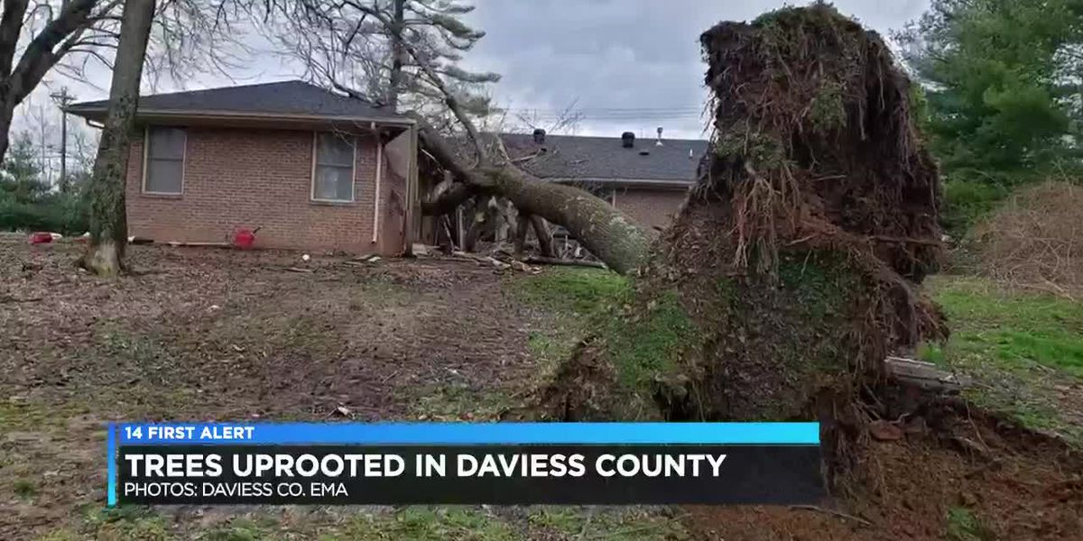 Severe storms, strong winds leave behind damage in Daviess Co.