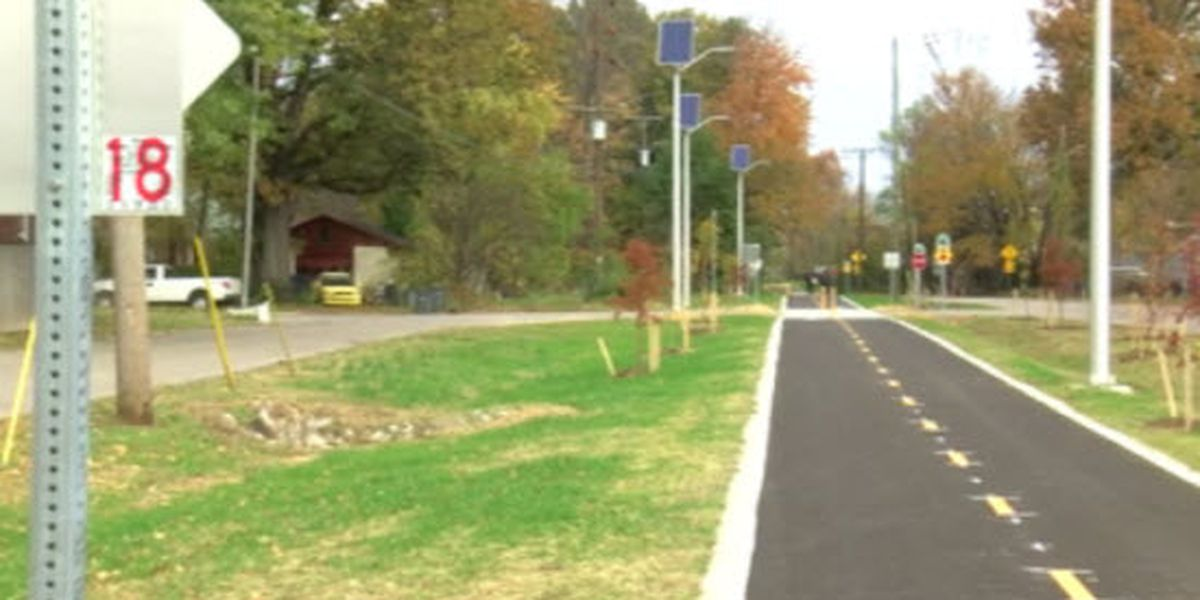 Various opinions expressed during Walnut Street Improvement Project hearing