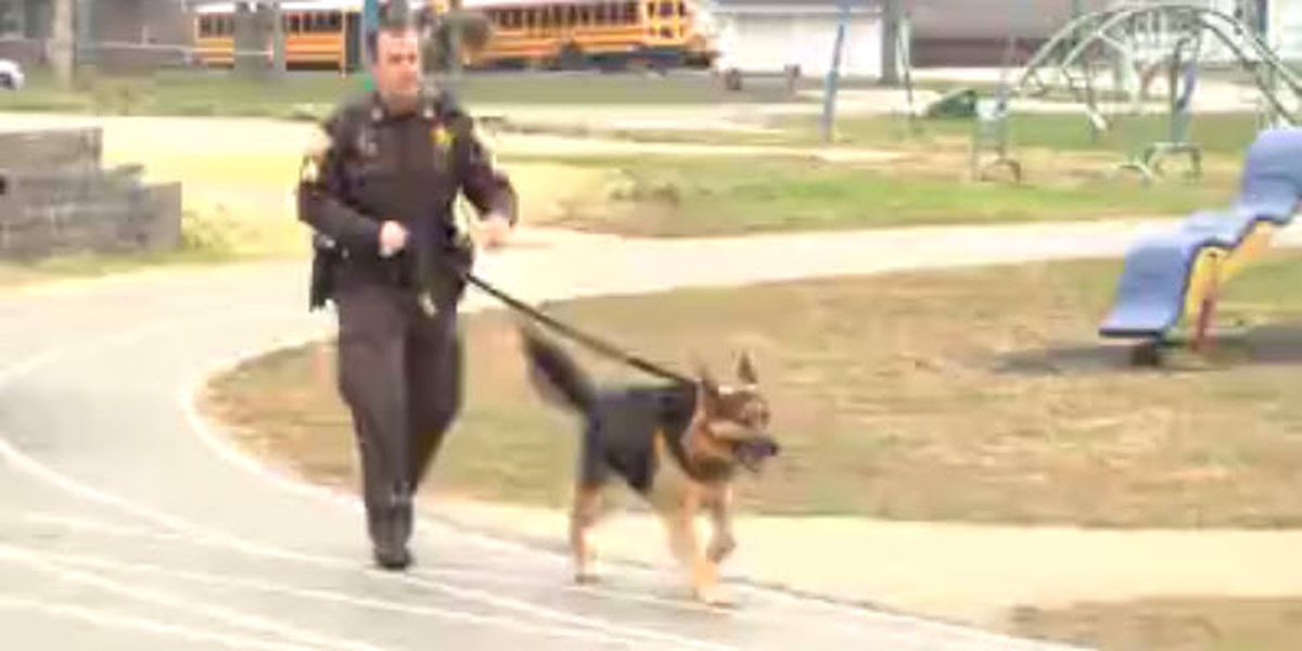 Webster Co. schools to get K-9 surveillance program