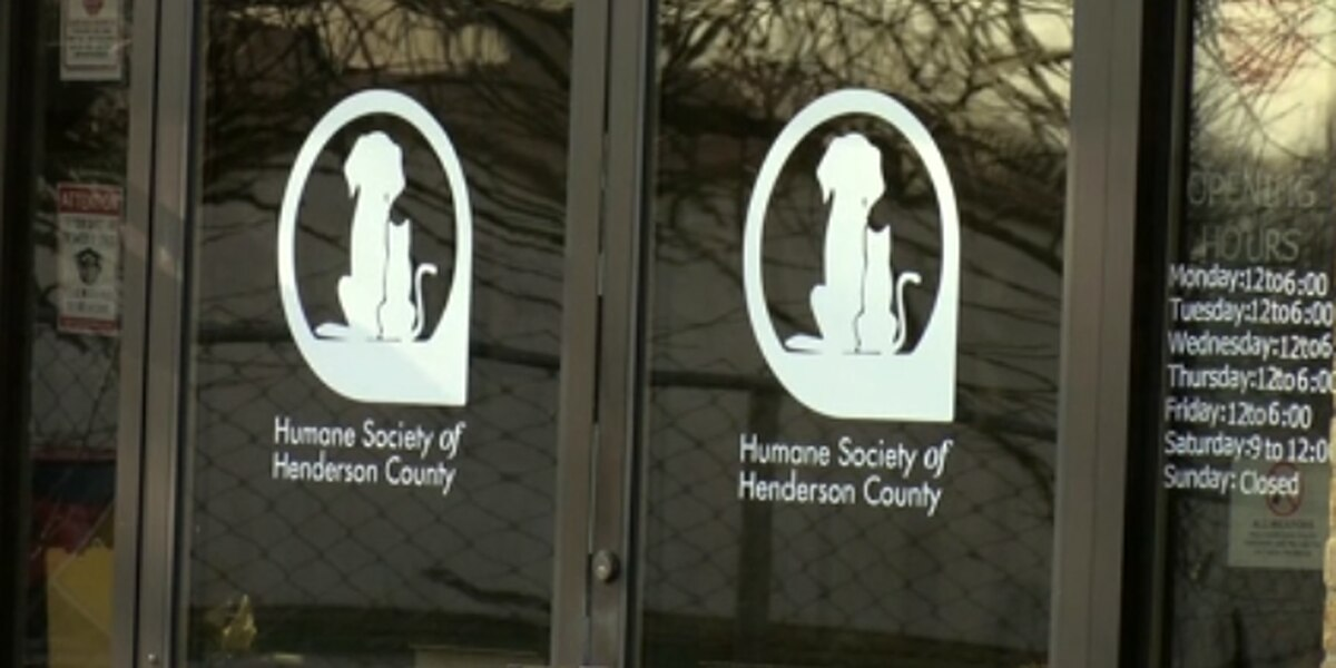 Henderson Co. reminds residents to care for outdoor pets as the temperature drops