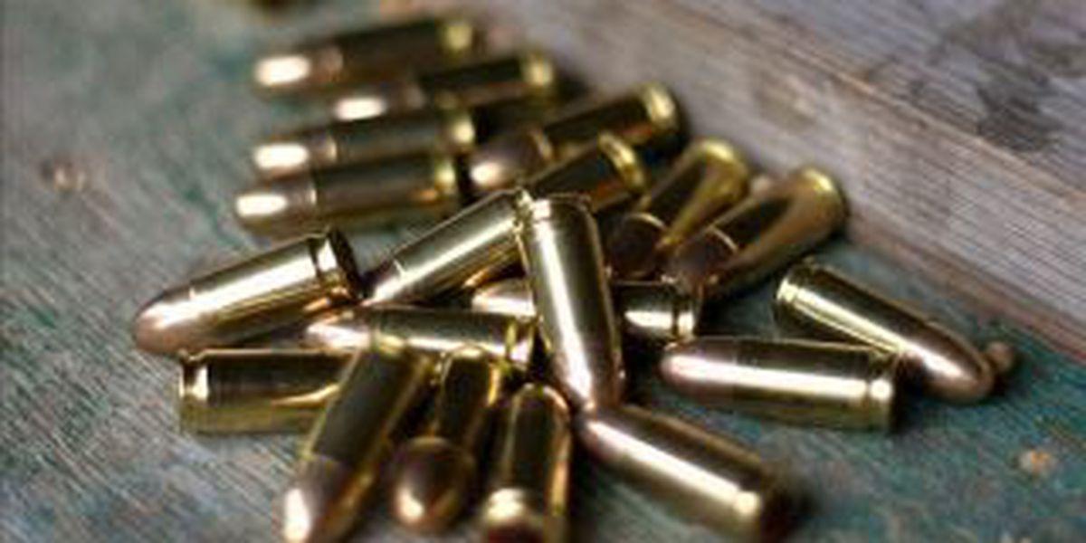 "Evansville woman finds bullet hole after hearing ""fireworks"""