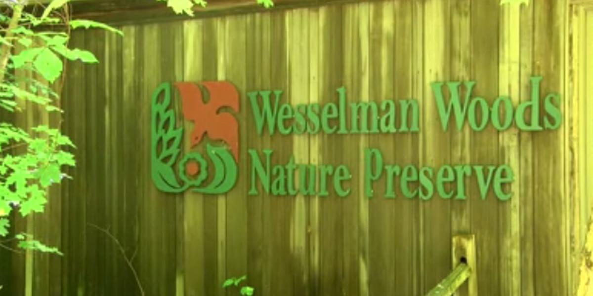 Trail access open for free at Wesselman Woods Nature Preserve