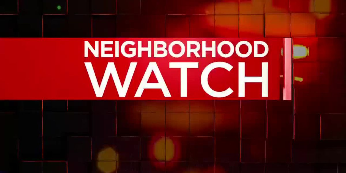 Neighborhood Watch: Sheriff's Office looks for theft suspects