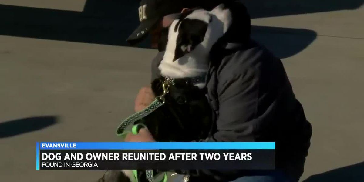 Missing dog found in GA after 2-yrs reunited with IN owner