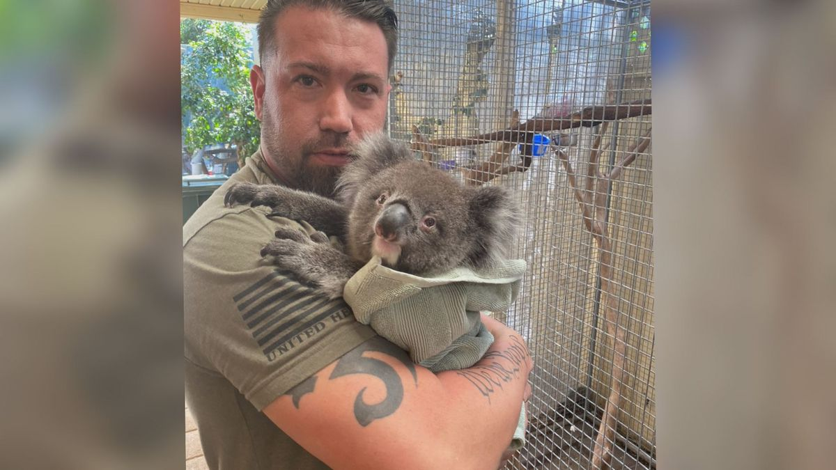 Evansville man back home after helping injured animals in Australia