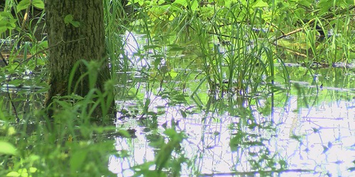 Local Great American Campout canceled due to flooding