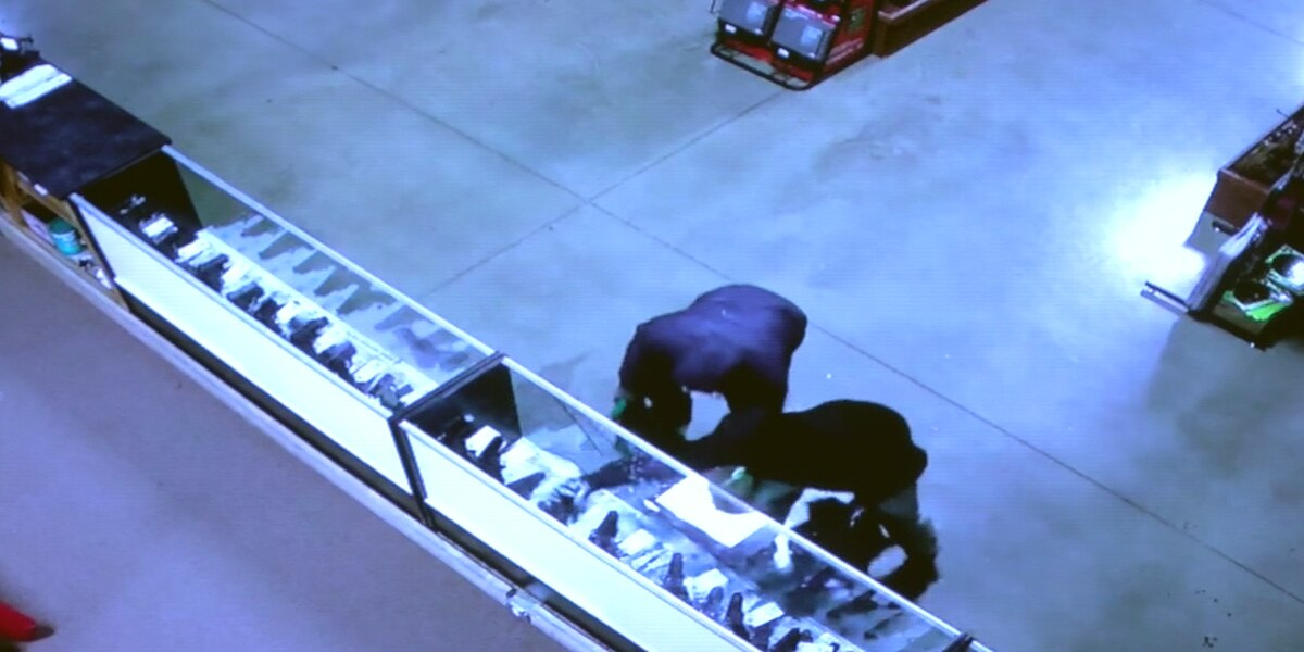 Search continues for gun burglary suspects, surveillance video released
