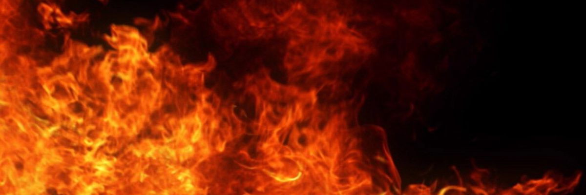 5 pets die in house fire in Posey Co.