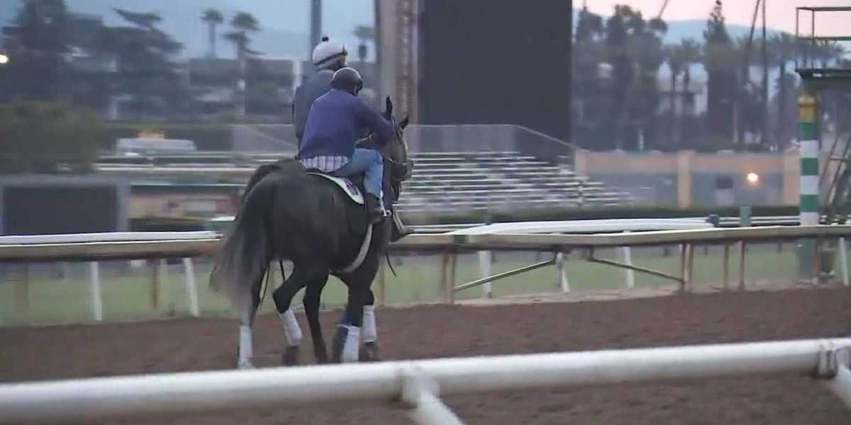22 horses die in 3 months at California racetrack