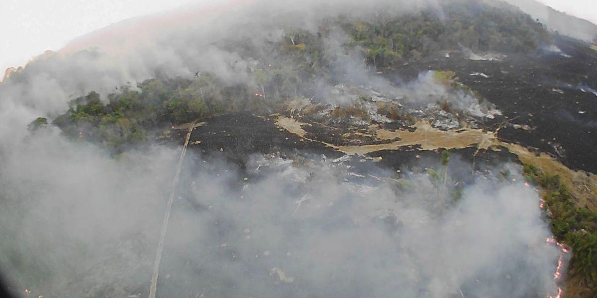 France threatens economic retaliation over Amazon rainforest fires