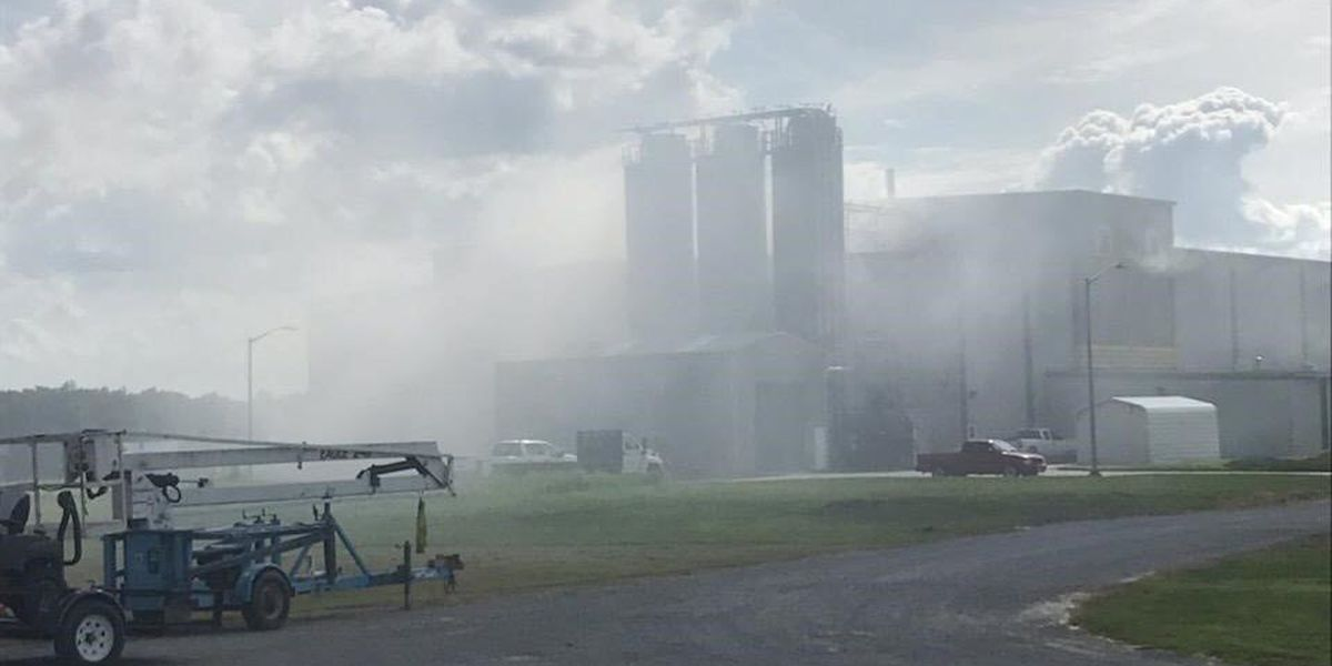 Firefighters called to Carmi business