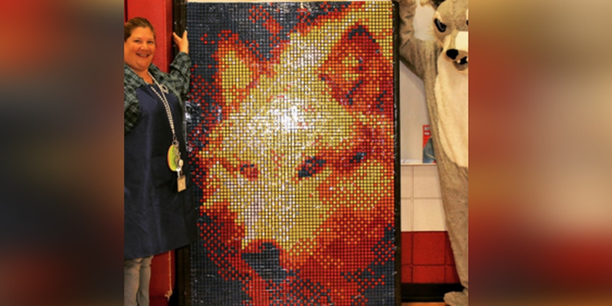 Country Heights Elementary creates mosaic art out of Rubik's Cubes