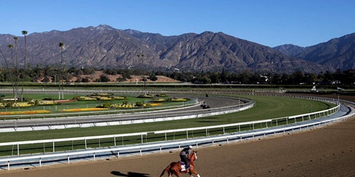 KY experts join investigation into 21 horse deaths at Santa Anita