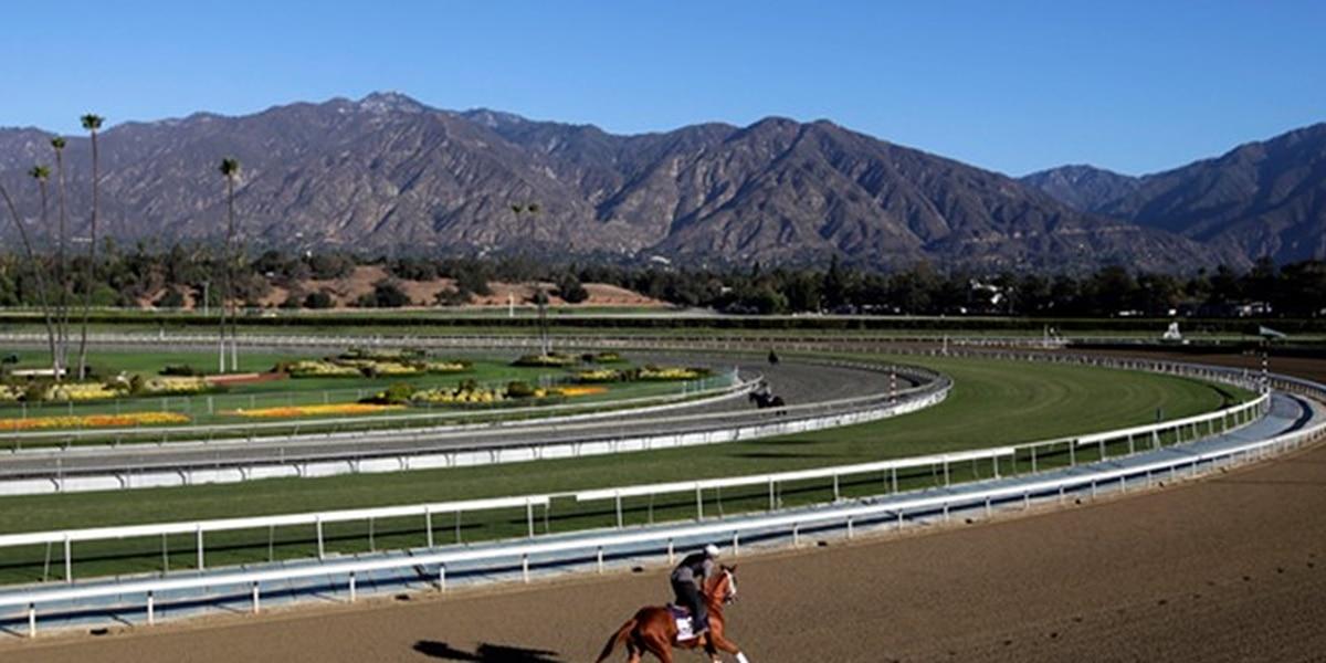 KY experts join investigation into 21 horse deaths at Santa Anita