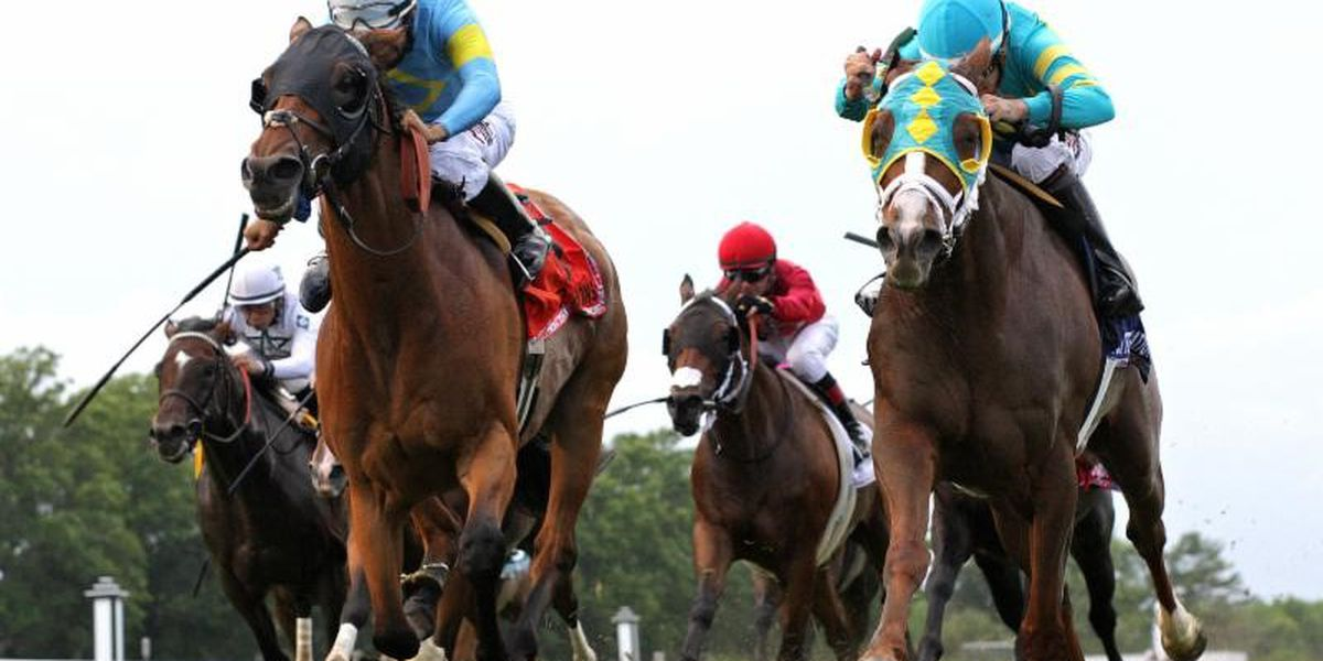 Ellis Park-raced Horses win Three of Four Stakes on Kentucky Downs Opening Day