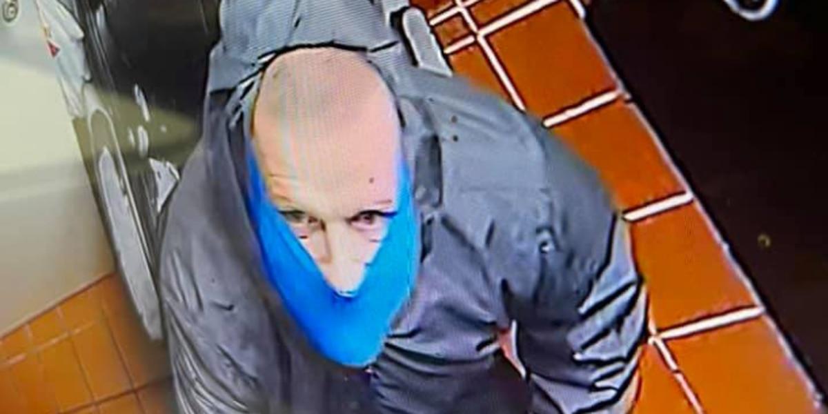 Greenville police investigating Dairy Queen burglary