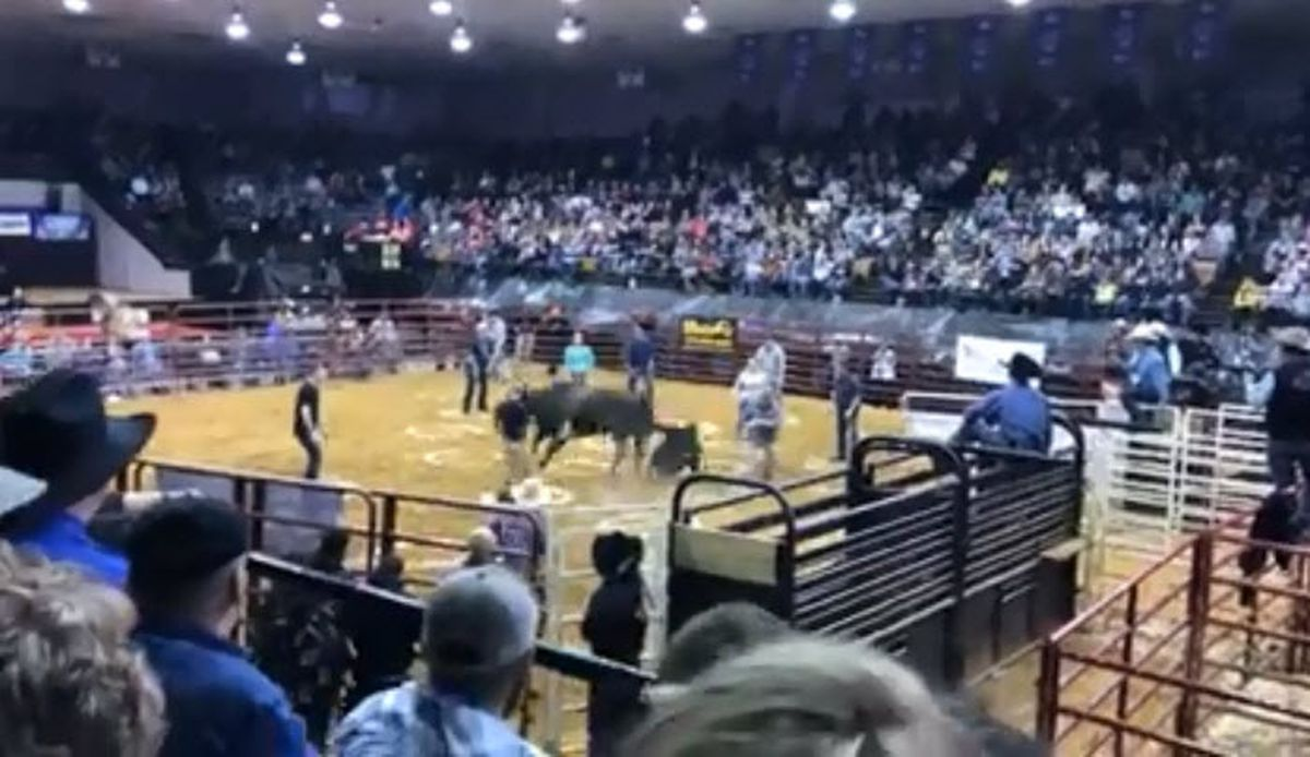 Several Hurt During Game At Bull Bash Event In Owensboro