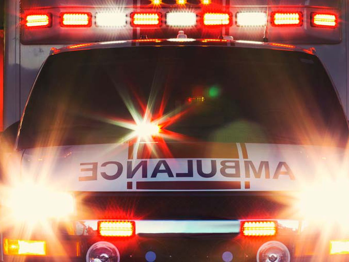 Man dead after tree falls on him in Daviess Co. Ky.