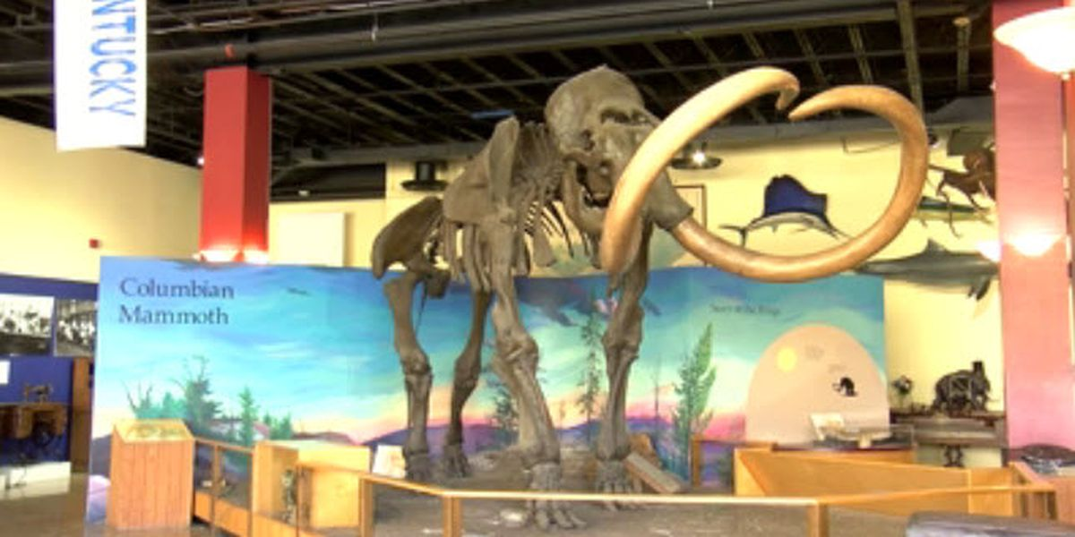 City, Owensboro Museum of Science & History staff look at building's future
